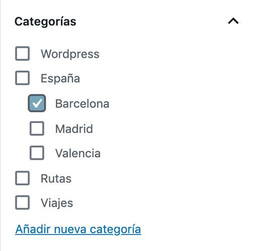 añadir categoría a una página de WordPress